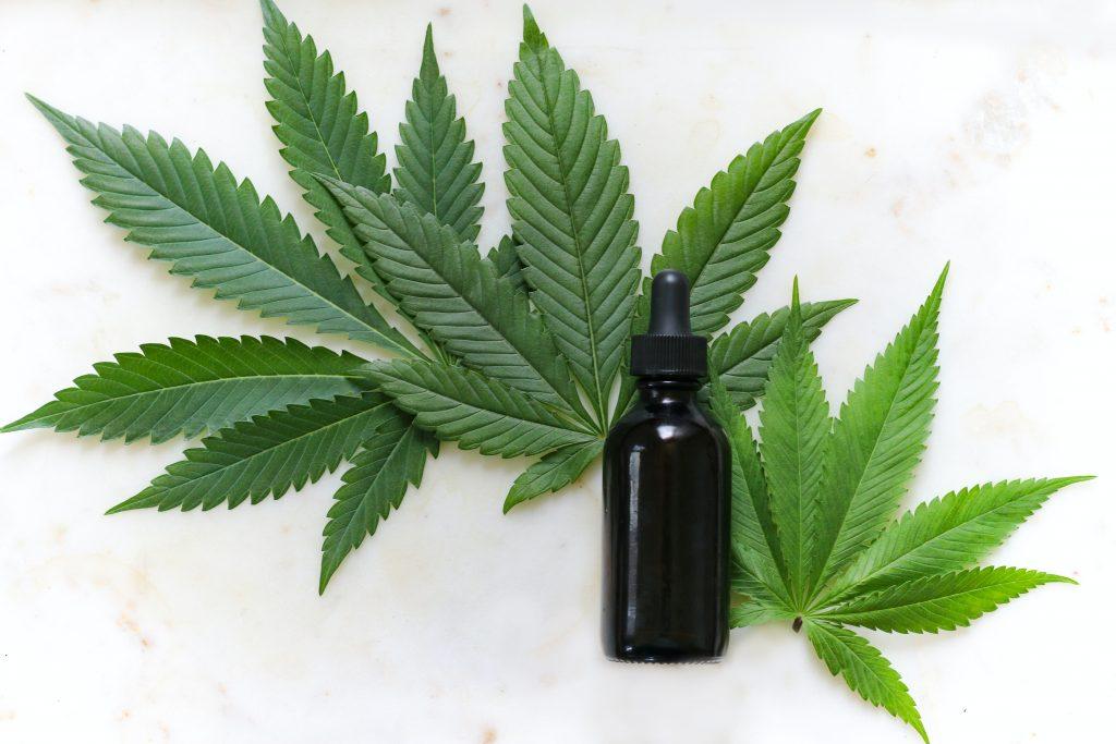 Cloud-ERP können den Anbau von Cannabis unterstützen.